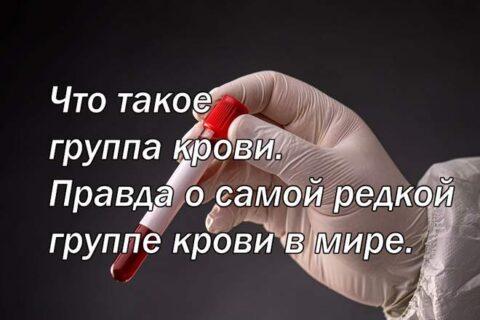 Что такое группа крови. Правда о самой редкой группе крови в мире.