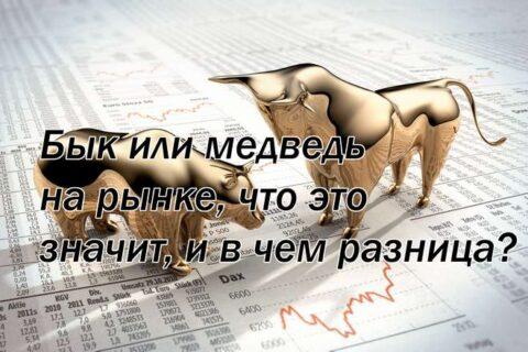 Бык или медведь на рынке, что это значит, и в чем разница?