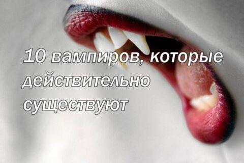 10 вампиров, которые действительно существуют